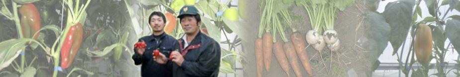 農業生産法人(有)中原農園