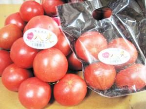 yatsushiro_tomato