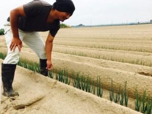 斎田農園1