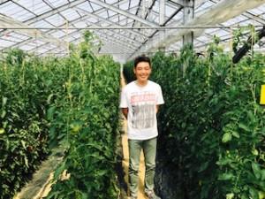 橋本農園1