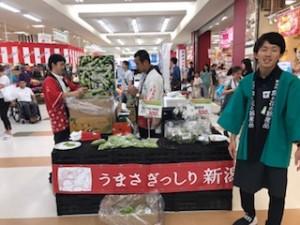 2017新潟フェアー2